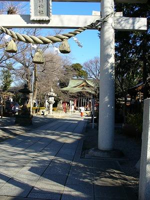 川口氷川神社に巫女
